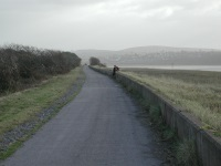 Tarka Trail near Pilton